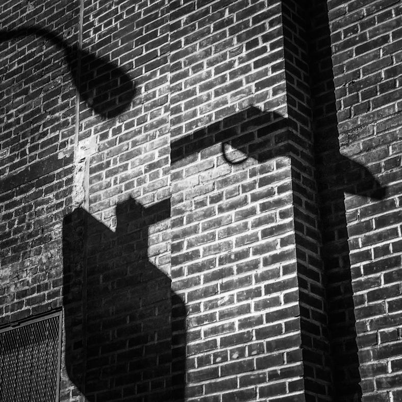 The Mugging - Cindy Malhotra - Cintia i2pixel