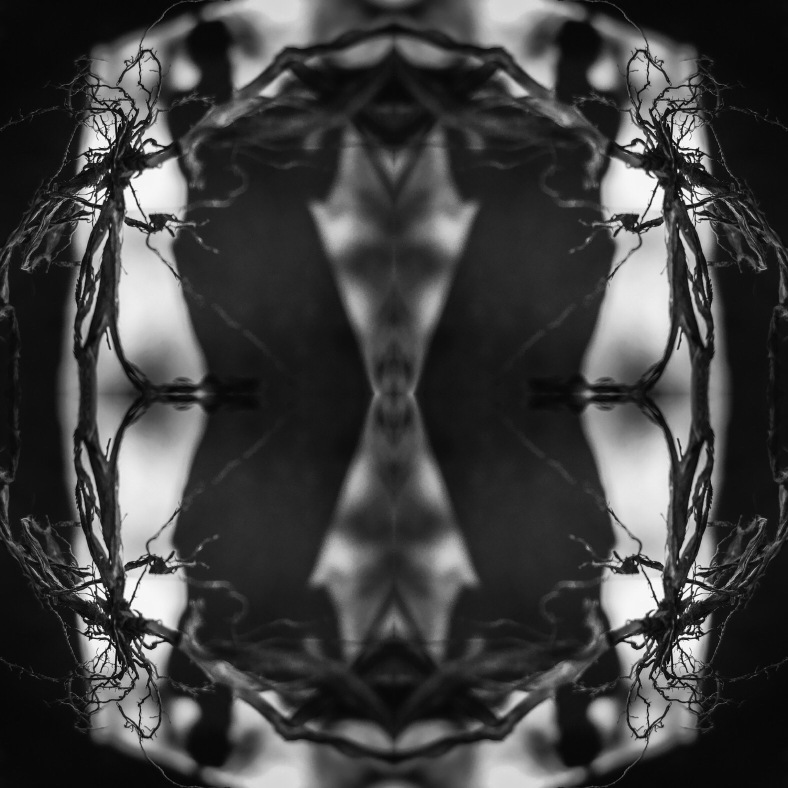 cintia i2pixel, cindy malhotra